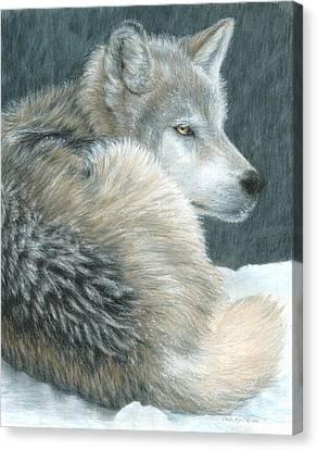 Cold Evening Canvas Print by Carla Kurt