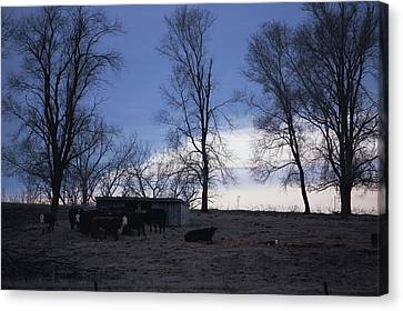 Cold Iowa Evening Canvas Print by Jame Hayes