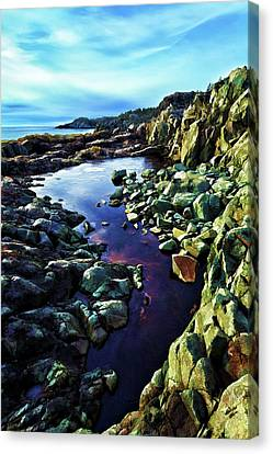 Cold Morning At Cutler Coast Canvas Print by ABeautifulSky Photography