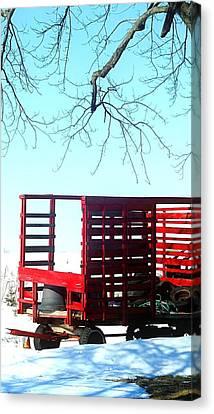 Cold Red Alone Canvas Print by Cyryn Fyrcyd