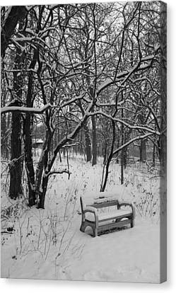 Cold Seat Canvas Print by Lauri Novak
