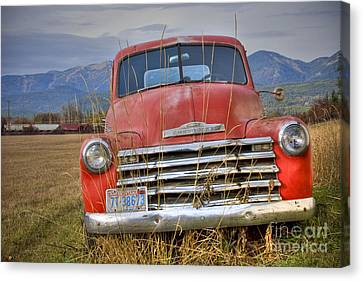 Collecting Weeds Canvas Print by Idaho Scenic Images Linda Lantzy