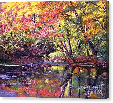 Color Poetry Canvas Print by David Lloyd Glover