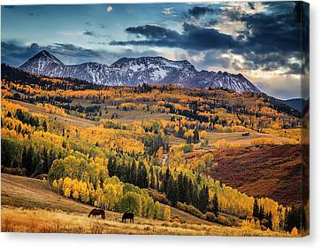 Colorado Autumn Canvas Print by Andrew Soundarajan
