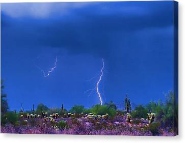 Colorful Desert Storm Canvas Print by James BO  Insogna