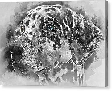 Colorful Dog Portrait 1 - By Diana Van Canvas Print by Diana Van