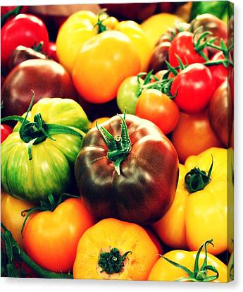 Colorful Harvest Canvas Print by Cathie Tyler