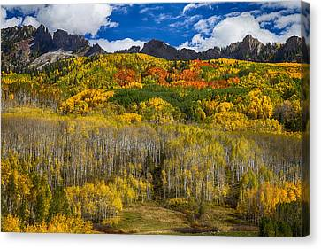 Colorful Kebler Pass Fall Foliage Canvas Print by James BO  Insogna