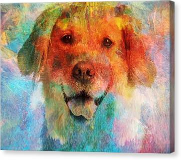 Colorful Lab Canvas Print by Dan Sproul