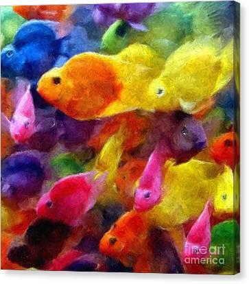 Colorful Parrot Cichlid Fish Canvas Print by Olga Hamilton