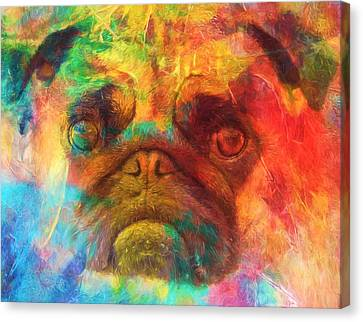 Colorful Pug Canvas Print by Dan Sproul