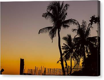 Colorful Tropical Paradise Sunset Silhouettes Canvas Print by James BO Insogna