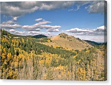 Colors In Colorado Canvas Print by James Steele