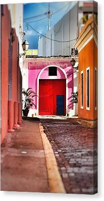 Colors Canvas Print by Marcos Del Valle