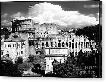 Colosseum From Roman Forums Black And White  Canvas Print by Stefano Senise