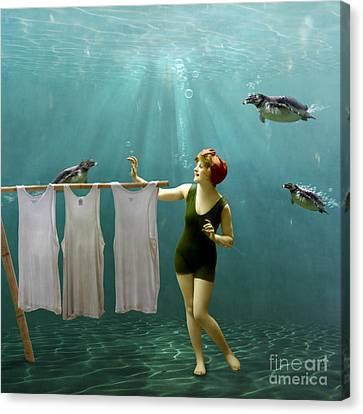 Come On Darlings It's Almost Dry Canvas Print by Martine Roch