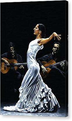 Concentracion Del Funcionamiento Del Flamenco Canvas Print by Richard Young
