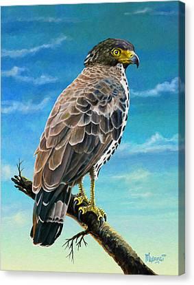Congo Serpent Eagle Canvas Print by Anthony Mwangi