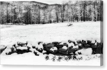 Connecticut Spring Snow 2016 Canvas Print by Bill Wakeley