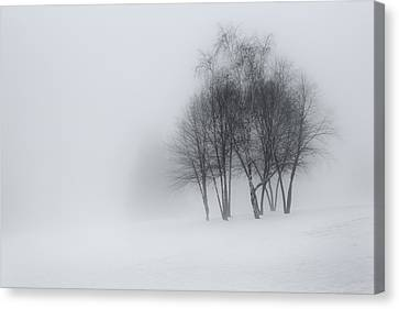 Connecticut Winter Dream Canvas Print by Bill Wakeley