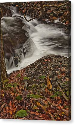 Constant Canvas Print by Jon Glaser