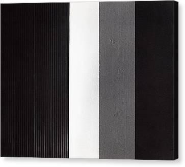 Continuum 3 Canvas Print by Steven Huszar