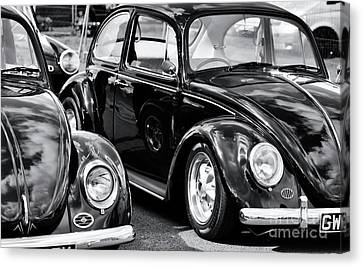 Cool Beetles Canvas Print by Tim Gainey