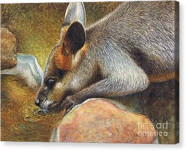 Cool Relief Canvas Print by Karen Hull