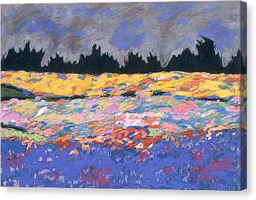 cooney sunset I Canvas Print by Mykul Anjelo