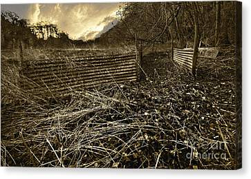 Corrugated Tin Pen Canvas Print by Meirion Matthias