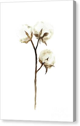 Cotton White Brown Beige Watercolor Art Print Natural Home Decor Abstract Flower Minimalist Poster Canvas Print by Joanna Szmerdt