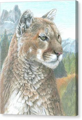 Cougar 2 Canvas Print by Carla Kurt