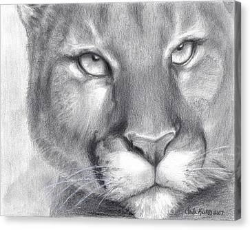 Cougar Spirit Canvas Print by Carla Kurt