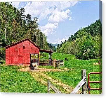 Country Life Canvas Print by Susan Leggett