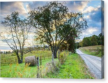 Country Road Canvas Print by Lisa Lemmons-Powers