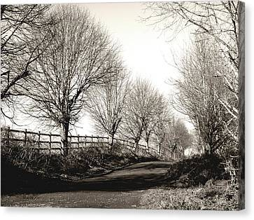 Countryside Canvas Print featuring the photograph Country Road by Roberto Alamino