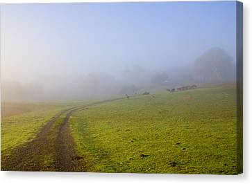 Country Roads Canvas Print by Mike  Dawson