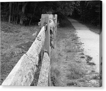 County Fence  Canvas Print by D R TeesT
