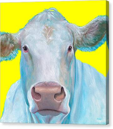 Cow Painting - Charolais Cattle Canvas Print by Jan Matson