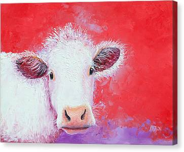 Cow Painting - Charolais Canvas Print by Jan Matson