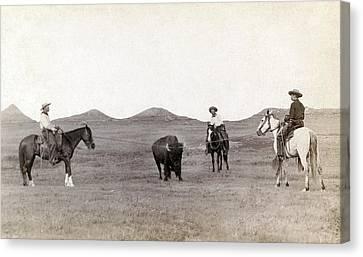 Cowboys, Roping A Buffalo Canvas Print by Everett