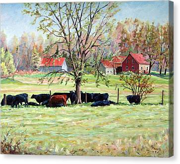 Cows Grazing In One Field  Canvas Print by Richard T Pranke