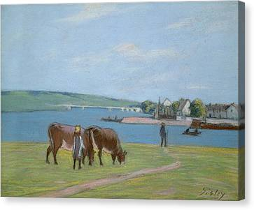 Cows On The Banks Of The Seine At Saint Mammes Canvas Print by Alfred Sisley