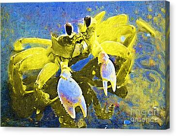 Crabby And Cute Canvas Print by Deborah MacQuarrie-Haig