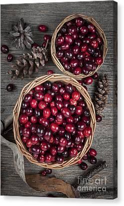 Cranberries In Baskets Canvas Print by Elena Elisseeva