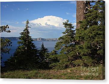Crater Lake 8 Canvas Print by Carol Groenen