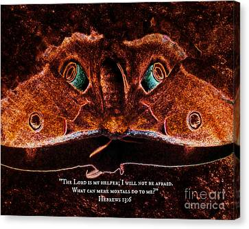 Creature Feature Canvas Print by Anita Faye