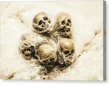 Creepy Skulls Covered In Spiderwebs Canvas Print by Jorgo Photography - Wall Art Gallery