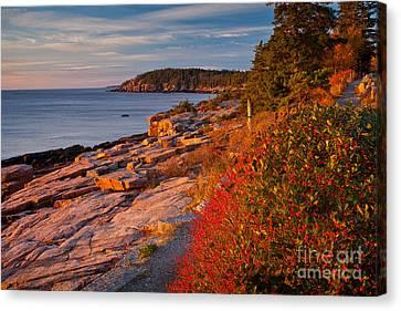 Crimson Cliffs Canvas Print by Susan Cole Kelly