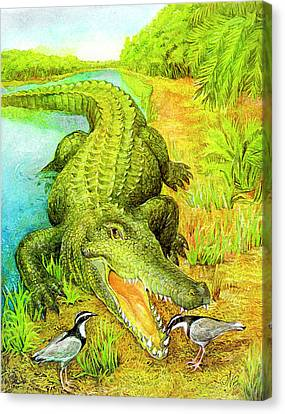 Crocodile Canvas Print by Natalie Berman